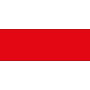 WifürKultur Sponsor Naspa